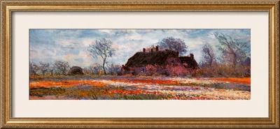 Tulip Fields at Sassenheim (detail) Prints by Claude Monet