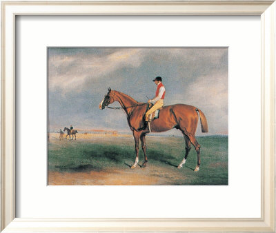 Velocipede Framed Art Print