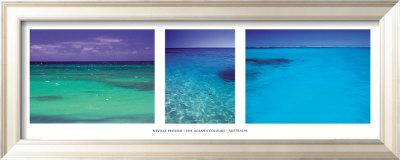 The ocean's colour Indrammet kunsttryk