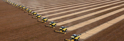 Workers on Combines Harvest Soybeans in Correntina, Northern Brazil Photographic Print