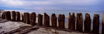 Wood Pilings on the Beach, Dungeness Spit, Olympic Peninsula, Washington State, USA Photographic Print by  Panoramic Images