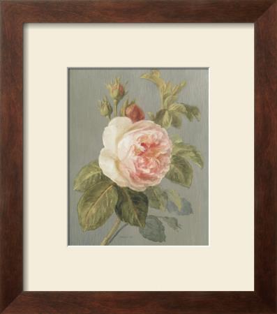 Heirloom Pink Rose Prints by Danhui Nai