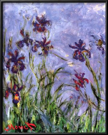 Irises Prints by Claude Monet