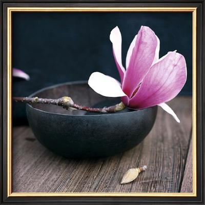 Pink Flower Prints by Amelie Vuillon