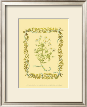 Chamomile Poster by Wendy Russell