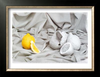 Lemon Posters by Gilles Martin-Raget
