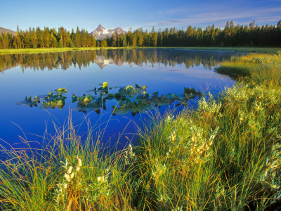 Index Peak Reflects into Mud Lake on the Beartooth Plateau, Wyoming, USA Photographic Print by Chuck Haney