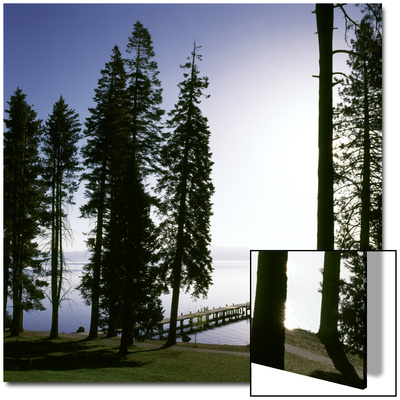 Dock at Ehrman Mansion, Sugar Pine Point State Park, Lake Tahoe, California, USA Prints by Deon Reynolds