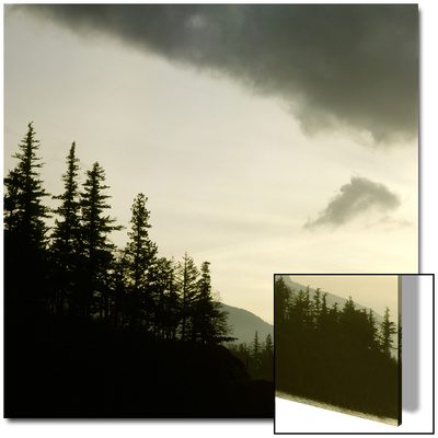 Forest and Mountains Along Columbia River, Oregon, USA Posters by Deon Reynolds