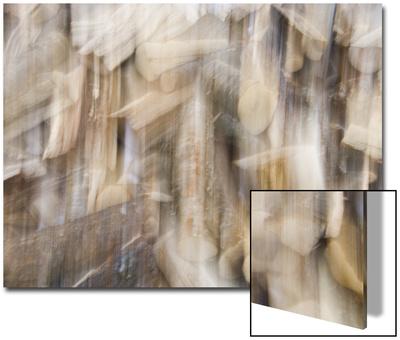 Double Exposure of a Wood Pile Print by John Churchman