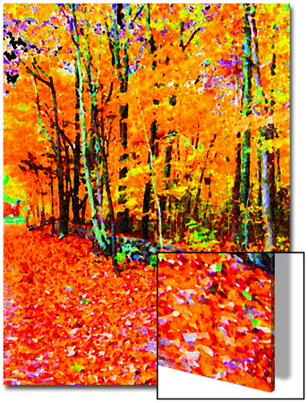 Forest in Autumn Póster por Rich LaPenna