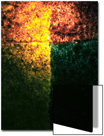 Abstract Image in Red, Yellow, and Green Posters by Daniel Root
