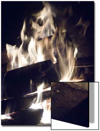 Fire and Wood Poster by Daniel Root