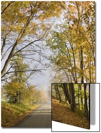 Rural Road in Autumn at Dawn, Vermont Prints by John Churchman
