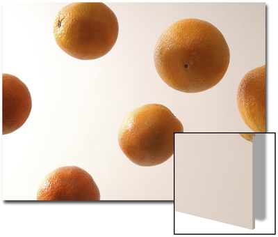 6 Oranges from Underneath Art by Daniel Root