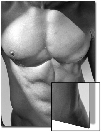 Muscular Shot of Male Chest and Stomach Prints by Rob Lang