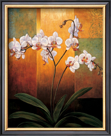 Orchids Art by Jill Deveraux