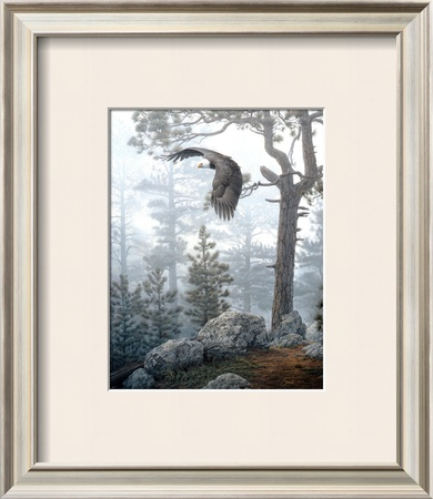 Shrouded Forest Prints by Daniel Smith