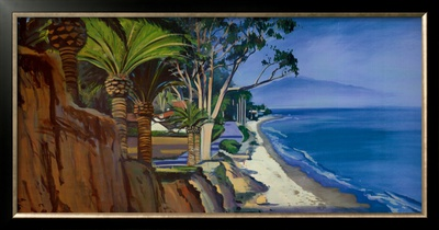 Butterfly Beach Prints by Hank Pitcher