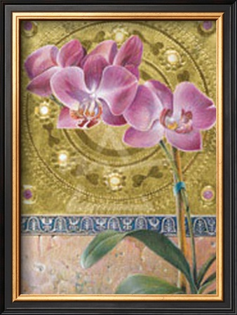 Phalaenopsis Orchid Art by Fred Wessel