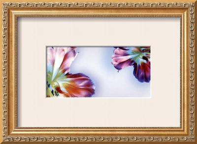 Floral Fantasy I Print by Frauke Meszaros