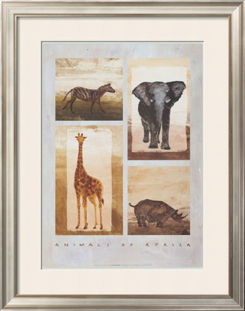 Animals of Africa Prints by Emmanuelle Teyras