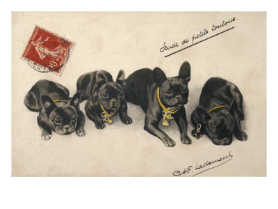 French Bulldogs Giclee Print