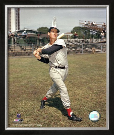 Ted Williams Framed Photographic Print