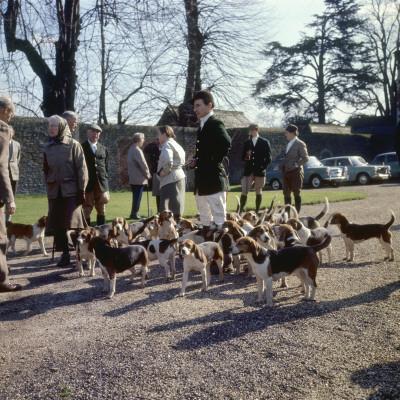 Fox Meet, Surrey 1960s Photographic Print
