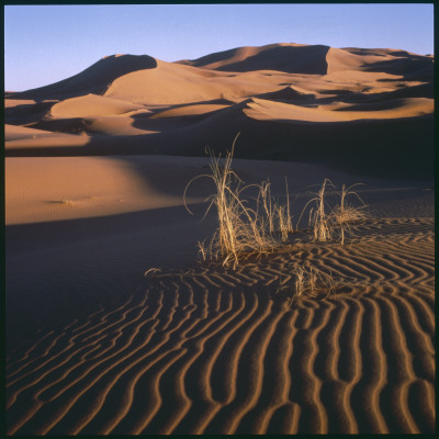 Desert Landscape at Merzouga, Morocco, North Africa Photographic Print