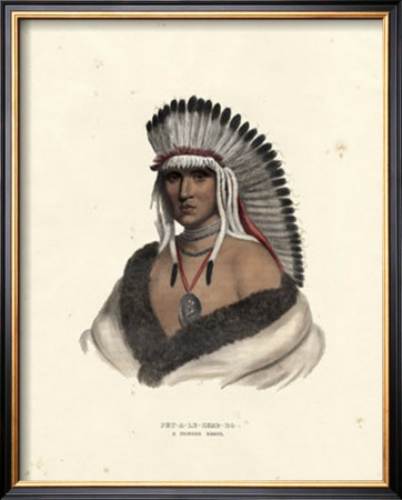 Pawnee Brave Prints by  McKenney & Hall