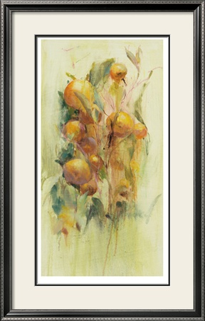 Golden Fruit Study II Limited Edition Framed Print