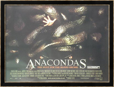 Anacondas Framed Poster