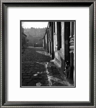 255 Avenue d'Alesia, c.1946 Framed Art Print