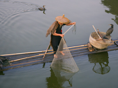 China, Guangxi Province, Yangshuo, Fisherman Casting Fishing Net from Bamboo Raft on the Li River Fotografik Baskı