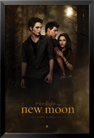 Twilight - New Moon Lamina Framed Poster