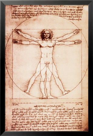 Vitruvian Man Lamina Framed Poster