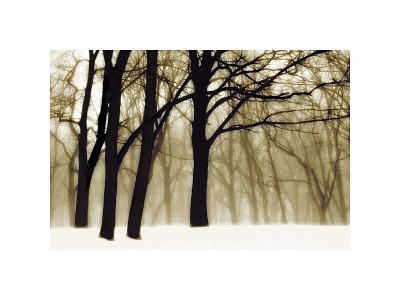 Past Dreams Giclee Print by David Winston