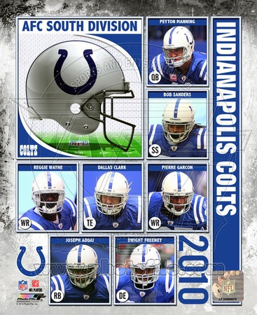 2010 Indianapolis Colts Team Composite Photo