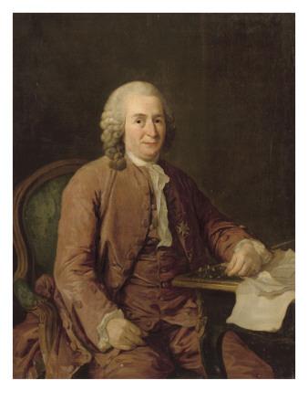 carl von linn naturaliste su dois 1707 1778. Black Bedroom Furniture Sets. Home Design Ideas