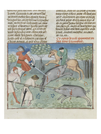 The Book of Gaston Phoebus Hunting: Killing the Boar Giclee Print