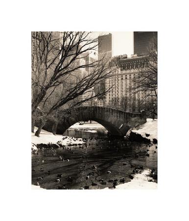 Central Park Bridges IV Giclee Print by Christopher Bliss
