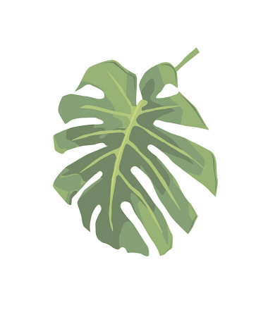 Philodendron I reproduction procédé giclée