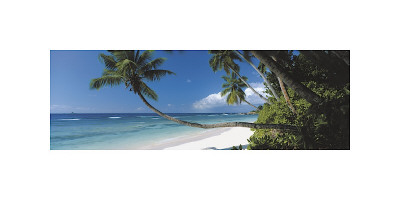 Anse Severe, Seychelles Giclee Print