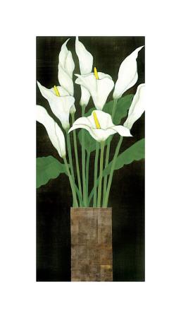 Ivory Calla Lilies Giclee Print by R. Rafferty