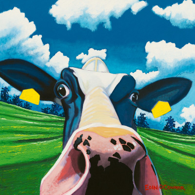 Cow II, Nosey Cow Posters by Eoin O'Connor