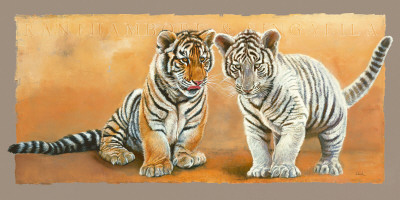 Oh My Sister! Ranthambore et Singalila Posters by Danielle Beck