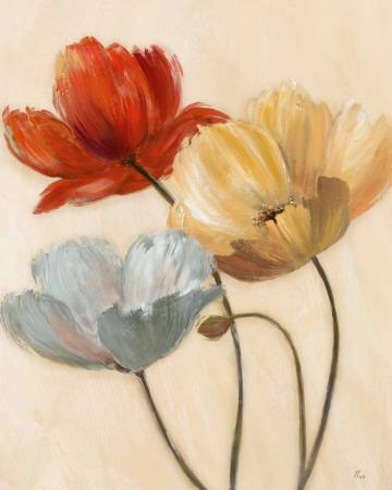 Poppy Palette II Posters by  Nan