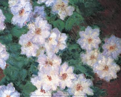Clematis Art by Claude Monet