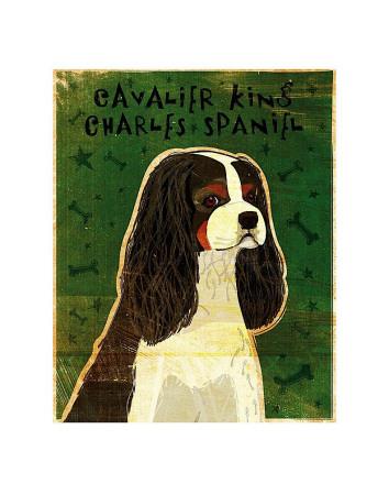 Cavalier King Charles (tri-color) Prints by John Golden